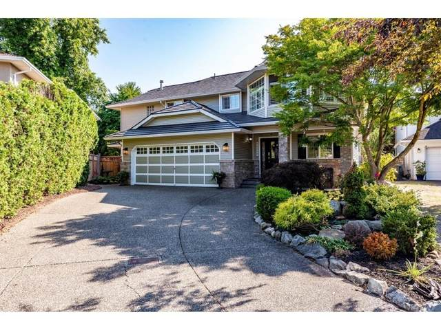 22232 46 Avenue, Langley, BC V2Z 1M4 (#R2601768) :: Premiere Property Marketing Team