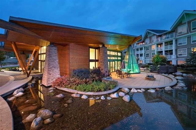 6490 194 Street #210, Surrey, BC V4N 6J9 (#R2603405) :: Initia Real Estate