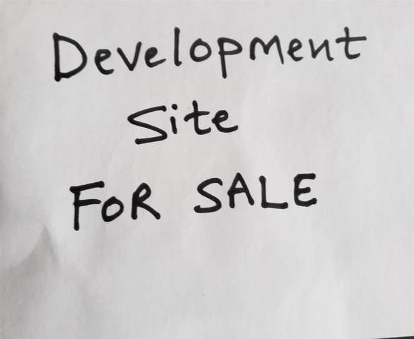 11822 Owen Street, Maple Ridge, BC V2X 4W7 (#R2603476) :: Initia Real Estate