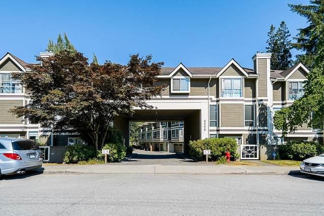 3228 Raleigh Street #19, Port Coquitlam, BC V3C 3J5 (#R2603591) :: Initia Real Estate