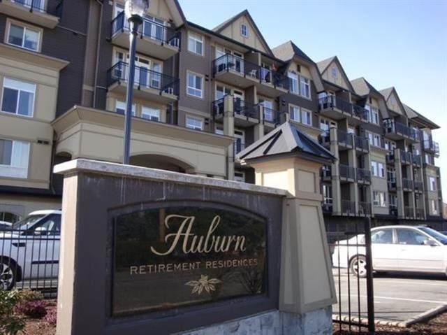 8531 Young Road #417, Chilliwack, BC V2P 0E1 (#R2603697) :: Premiere Property Marketing Team