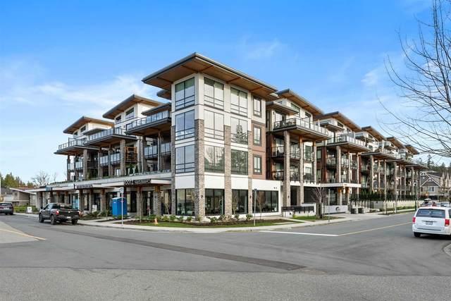 12460 191 Street #205, Pitt Meadows, BC V3Y 2J2 (#R2603760) :: Initia Real Estate