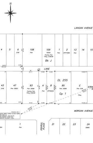 1745 Morgan Avenue, Port Coquitlam, BC V3C 1J6 (#R2603828) :: Ben D'Ovidio Personal Real Estate Corporation   Sutton Centre Realty