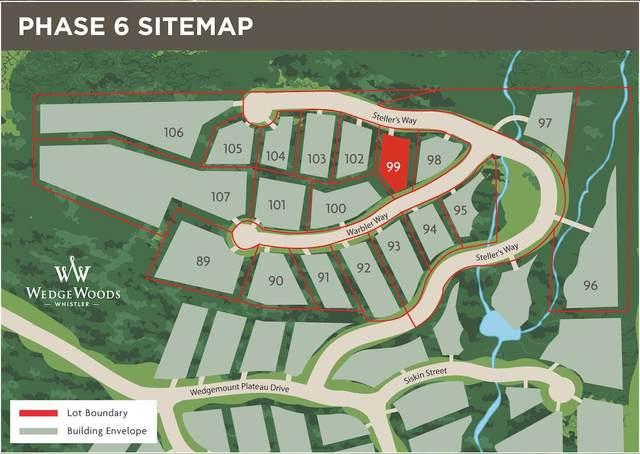 9304 Steller's Way, Whistler, BC V8E 1M1 (#R2604453) :: Initia Real Estate