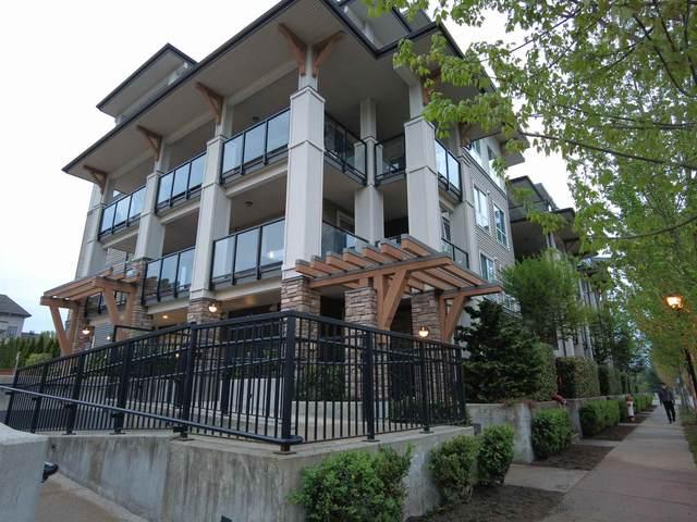 12409 Harris Road #204, Pitt Meadows, BC V3Y 0E7 (#R2604542) :: Initia Real Estate