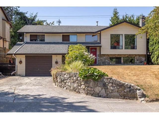 2977 264A Street, Langley, BC V4W 3B4 (#R2605500) :: 604 Realty Group