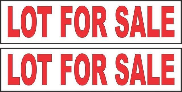 10627 124A Street, Surrey, BC V3V 0E2 (#R2605621) :: Ben D'Ovidio Personal Real Estate Corporation   Sutton Centre Realty