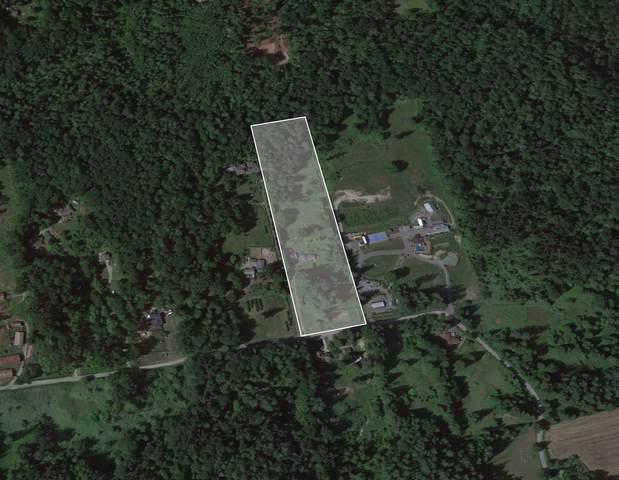 31061 Gunn Avenue, Mission, BC V4S 1J7 (#R2605808) :: Ben D'Ovidio Personal Real Estate Corporation | Sutton Centre Realty