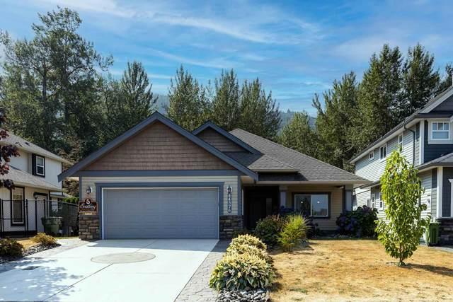 44576 Mclaren Drive, Chilliwack, BC V2R 0A4 (#R2606418) :: Ben D'Ovidio Personal Real Estate Corporation   Sutton Centre Realty