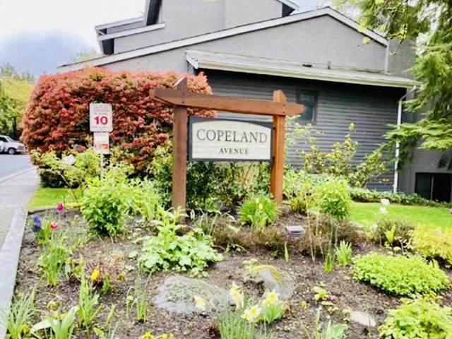 3406 Copeland Avenue, Vancouver, BC V5S 4B6 (#R2606746) :: Ben D'Ovidio Personal Real Estate Corporation   Sutton Centre Realty