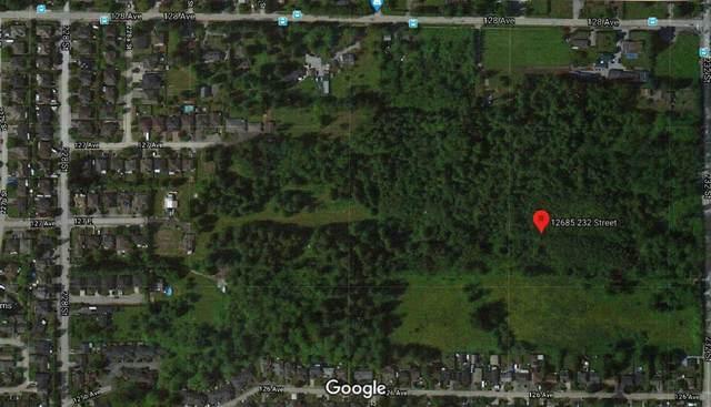12685 232ND Street, Maple Ridge, BC V4R 0C7 (#R2607132) :: Ben D'Ovidio Personal Real Estate Corporation   Sutton Centre Realty
