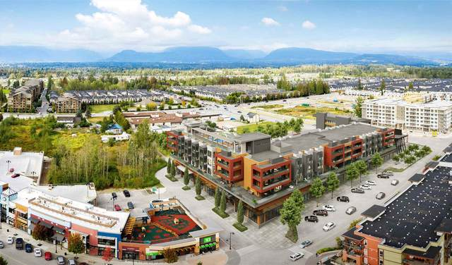 20727 Willoughby Town Centre Drive A329, Langley, BC V2Y 1X1 (#R2607537) :: Ben D'Ovidio Personal Real Estate Corporation | Sutton Centre Realty