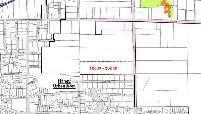 12639 232 Street, Maple Ridge, BC V2X 6T7 (#R2610828) :: Ben D'Ovidio Personal Real Estate Corporation   Sutton Centre Realty