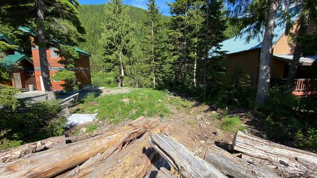 47065 Snowmist Drive, Mission, BC V0M 1A1 (#R2612880) :: 604 Home Group
