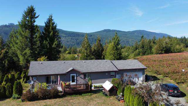 41521 Henderson Road, Columbia Valley, BC V2R 4X6 (#R2613765) :: 604 Home Group