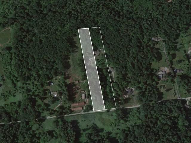 30889 Gunn Avenue, Mission, BC V4S 1J7 (#R2613937) :: 604 Home Group
