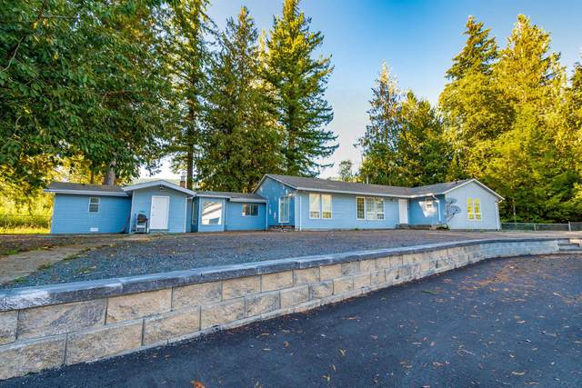 500 Maple Falls Road, Columbia Valley, BC V2R 4X7 (#R2620570) :: 604 Home Group