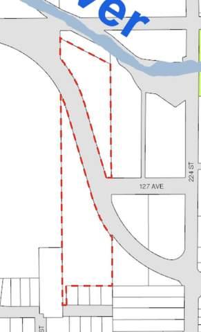 12566 223 Street, Maple Ridge, BC V2X 3Z1 (#R2620950) :: 604 Home Group