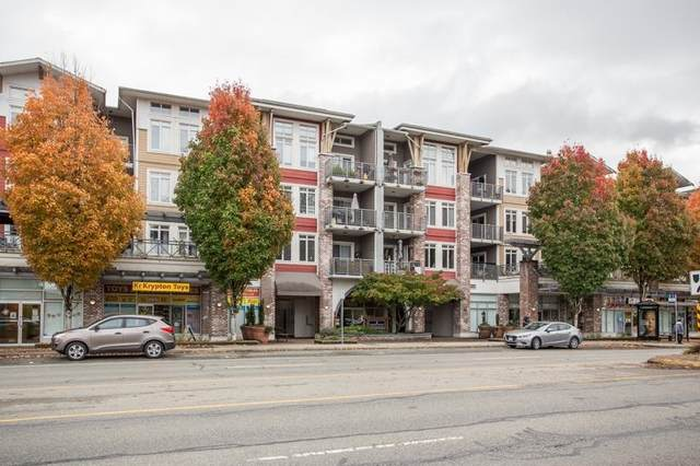 12350 Harris Road #223, Pitt Meadows, BC V3Y 0C5 (#R2621934) :: Ben D'Ovidio Personal Real Estate Corporation   Sutton Centre Realty