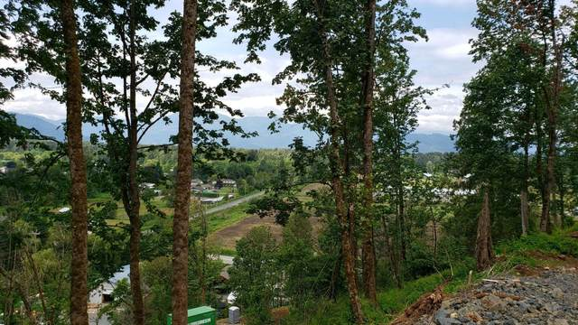 42910 Vedder Mountain Road Lot 1, Yarrow, BC V2R 6G1 (#R2622059) :: 604 Home Group