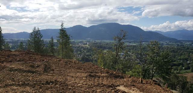 42910 Vedder Mountain Road Lot 4, Yarrow, BC V2R 6G1 (#R2622090) :: 604 Home Group