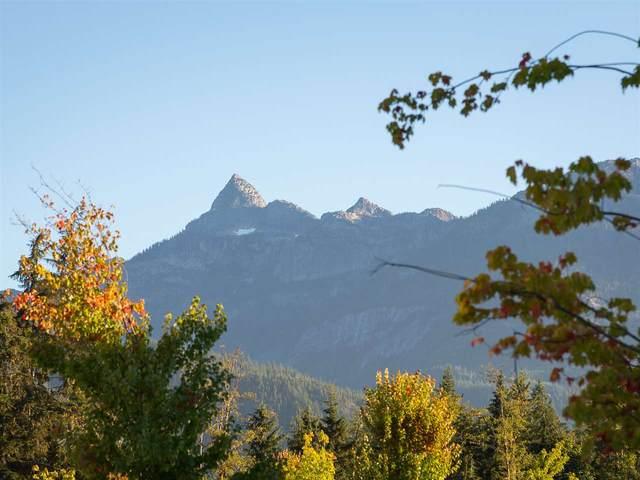 3412 Mamquam Road, Squamish, BC V8B 0S6 (#R2623632) :: 604 Home Group