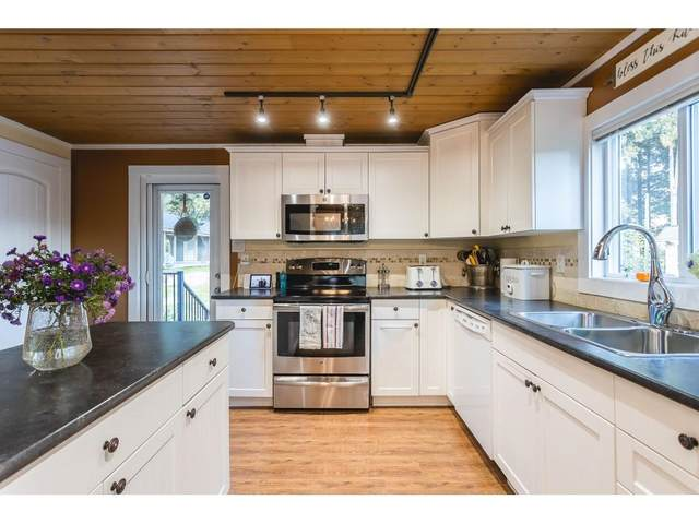 46151 Lougheed Highway, Mission, BC V0M 1A1 (#R2624945) :: 604 Home Group
