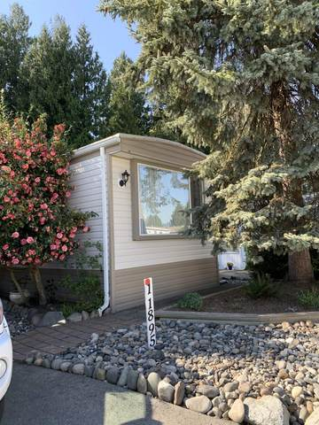 11895 Pinyon Drive #63, Pitt Meadows, BC V3Y 1Z3 (#R2625512) :: 604 Home Group