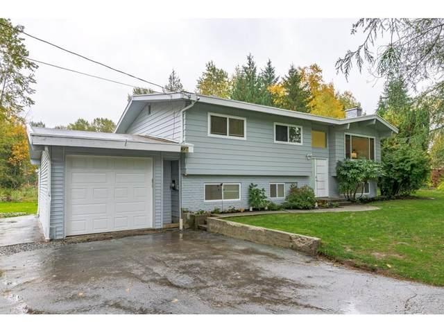 4226 244 Street, Langley, BC V2Z 1M8 (#R2627381) :: Keller Williams Elite Realty