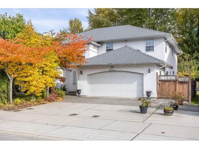 10048 160 Street, Surrey, BC V4N 2J5 (#R2627433) :: Initia Real Estate