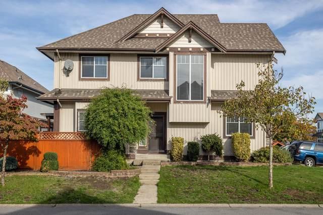 18195 66A Avenue, Surrey, BC V3S 0N8 (#R2627486) :: Macdonald Realty