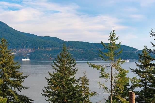 205 Highland Trail, Bowen Island, BC V0N 1G1 (#R2627961) :: 604 Home Group