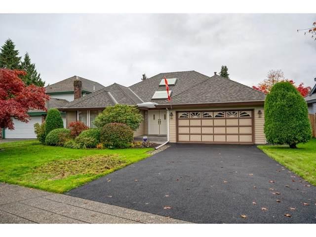 10489 164 Street, Surrey, BC V4N 1V6 (#R2628318) :: 604 Home Group