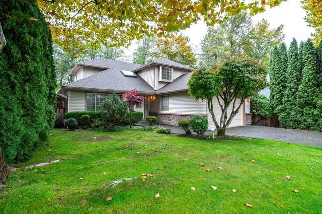 8618 141 Street, Surrey, BC V3W 3A9 (#R2628772) :: 604 Home Group