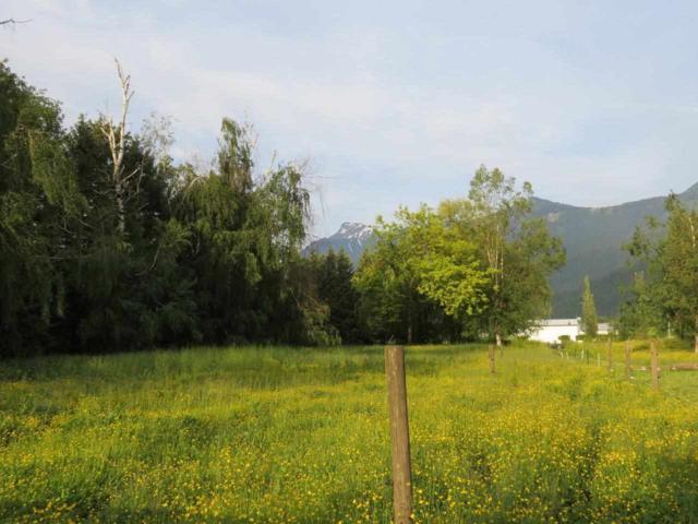 8876 Annis Road, Rosedale, BC V0X 1X2 (#R2172634) :: HomeLife Glenayre Realty