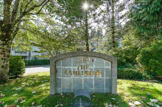 3280 Plateau Boulevard #214, Coquitlam, BC V3E 3J5 (#R2198083) :: HomeLife Glenayre Realty