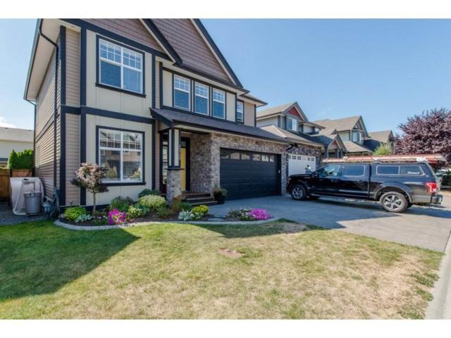 45728 Safflower Crescent, Sardis, BC V2R 0H6 (#R2198223) :: HomeLife Glenayre Realty