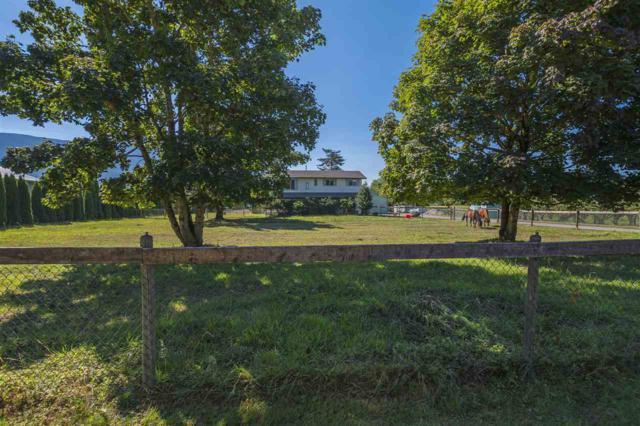 41490 Berry Road, Yarrow, BC V2R 5J1 (#R2201146) :: HomeLife Glenayre Realty