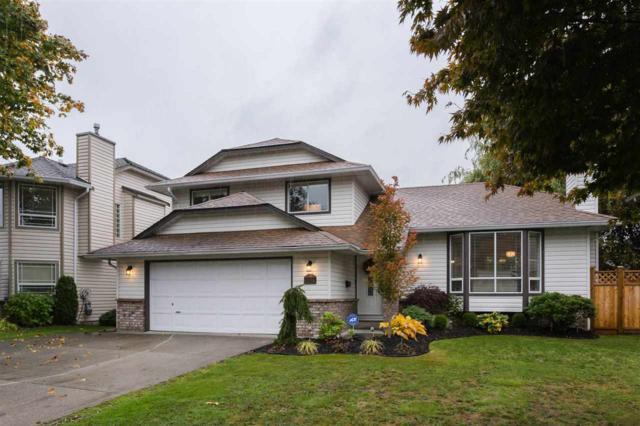 9021 204 Street, Langley, BC V1M 2J3 (#R2214549) :: HomeLife Glenayre Realty