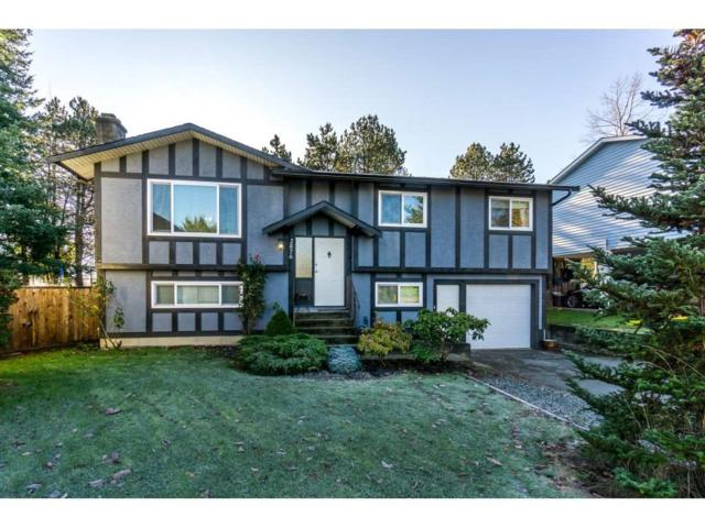 2876 267A Street, Langley, BC V4W 3B8 (#R2226858) :: Titan Real Estate - Re/Max Little Oak Realty