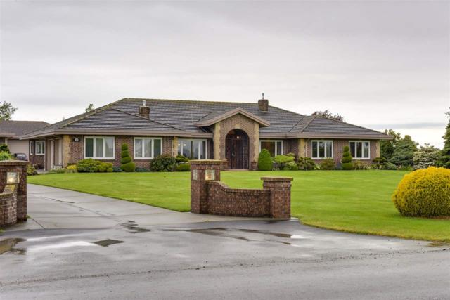 3200 Westham Island Road, Delta, BC V4K 3N2 (#R2233277) :: Re/Max Select Realty