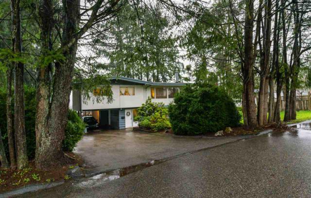 13233 113B Avenue, Surrey, BC V3R 2K8 (#R2238406) :: Re/Max Select Realty