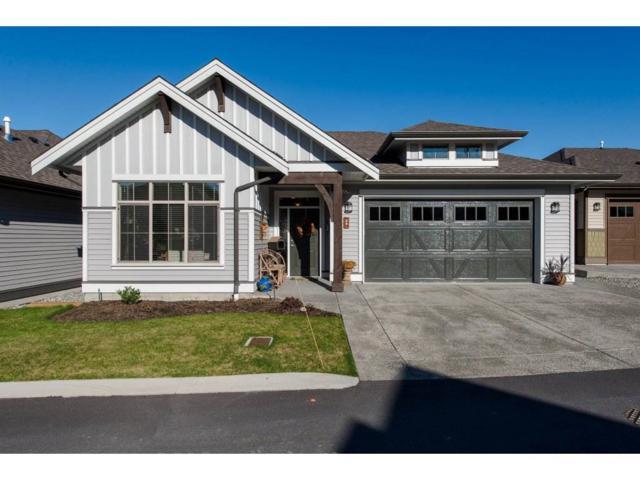 45900 South Sumas Road #69, Chilliwack, BC V2R 0S9 (#R2238969) :: Re/Max Select Realty