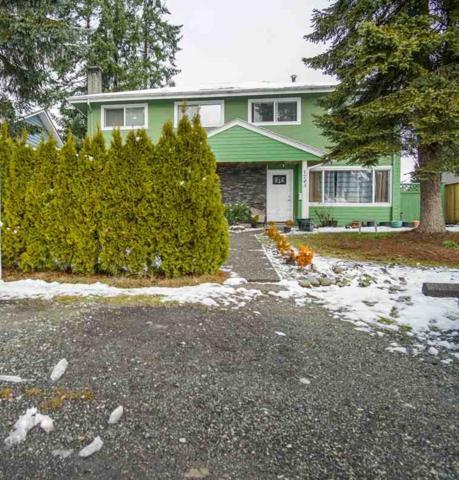1745 Dorset Avenue, Port Coquitlam, BC V3B 2A3 (#R2239338) :: Re/Max Select Realty