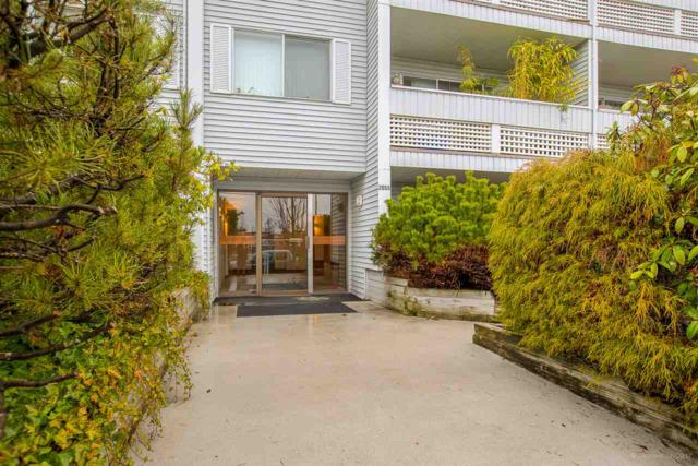 2055 Suffolk Avenue #201, Port Coquitlam, BC V3B 1H4 (#R2239452) :: Re/Max Select Realty
