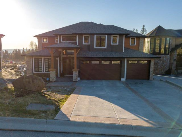 11011 Carmichael Street, Maple Ridge, BC V2W 1G8 (#R2244201) :: West One Real Estate Team