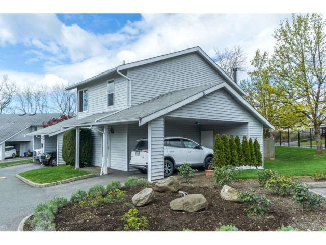 26970 32 Avenue #1, Langley, BC V4W 3T4 (#R2259846) :: Homes Fraser Valley