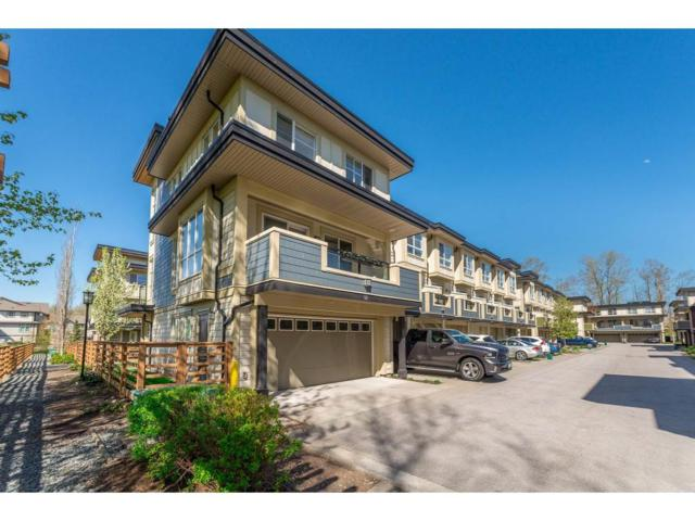 19477 72A Avenue #52, Surrey, BC V4N 6M2 (#R2260764) :: Homes Fraser Valley