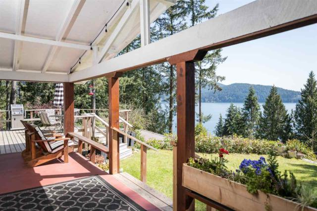 5473 Indian River Drive, North Vancouver, BC V7G 2T7 (#R2264677) :: Vancouver House Finders