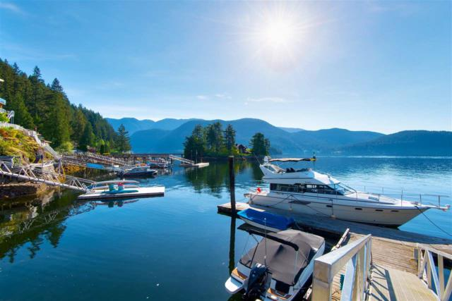 5463 Indian River Drive, North Vancouver, BC V7G 2T7 (#R2269351) :: Re/Max Select Realty